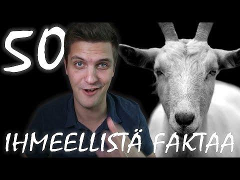 Ville Mäkipelto