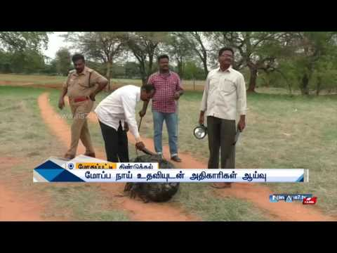 Mysterious object falls from the sky in Dindugal | News7 Tamil