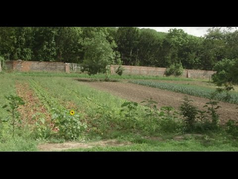 Animal-free Farming | Living With The Land | Part 6