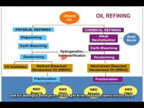 refining palm oil part 1 (Eng)