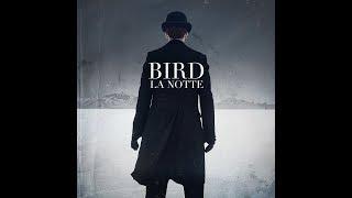 Bird - Maybe Someday