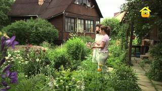 видео Расположение беседки в ландшафтной композиции