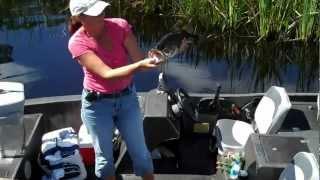 "Local Angler ""Lisa Boyd"" Hauls In A Nice Largemouth Bass SE Orlando"