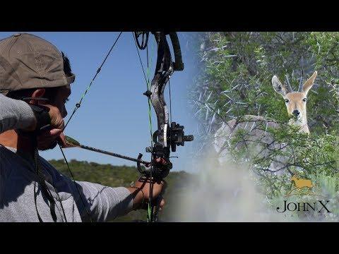 Mountain Reedbuck Bow Hunt with Quinton De Kock | John X Part 1