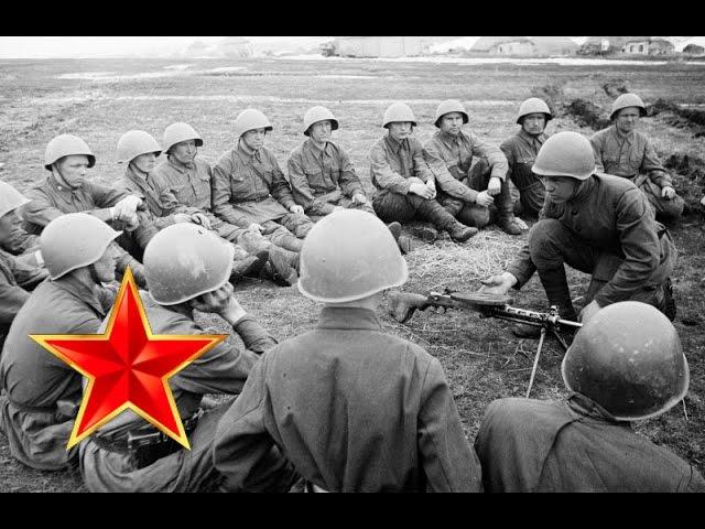 Соловьи – Песни военных лет – Лучшие фото – Соловьи, соловьи не тревожте солдат