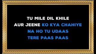 Tum Mile Dil Khile - Karaoke - Criminal - Kumar Sanu