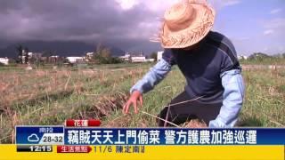 菜價漲 賊橫行 警方發動護農專案