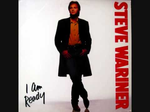 Steve Wariner / Crash Course In The Blues