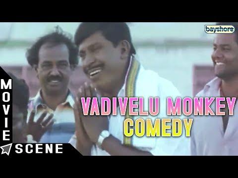 Ayya - Vadivelu Monkey Comedy | Sarath Kumar | Nayanthara | Hari