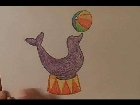 Как нарисовать морского котика карандашом поэтапно для детей