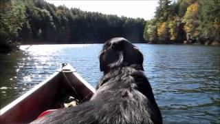Gheenoe with 4hp outboard motor : update