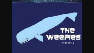 Watch Weepies Antarctica video