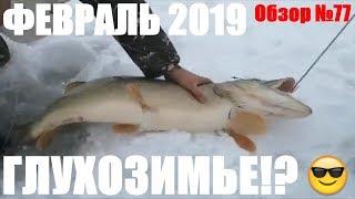 Рыбалка в Феврале Обзор 77 рыбалка в Казахстане 2019