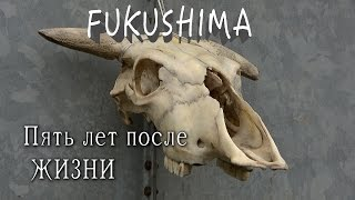 Фукусима: 5 лет после жизни, специальный репортаж из запретной зоны /  Fukushima: 5 years after life