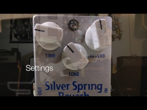 Mad Professor Silver Spring Reverb Into A Blackface Fender Showman Amp