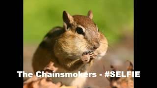 The Chainsmokers - #SELFIE Chipmunk Version