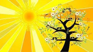 Guided Meditation for Kids | HEALING RAYS OF THE SUN | Bedtime Meditation for Children