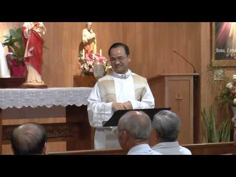 Linh mục Phạm Tĩnh : Thế nào là Tội , Làm sao để Tránh 1