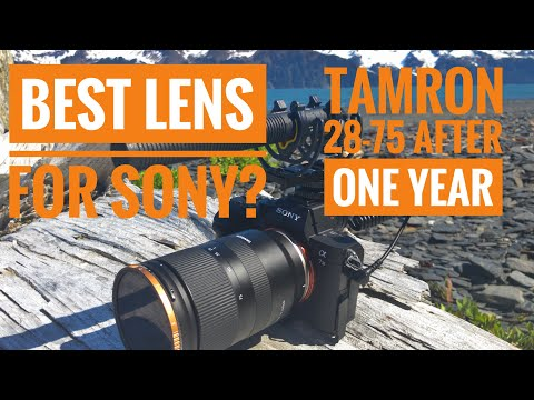 Tamron 28-75mm f2.8 After a Year of Use: A Review