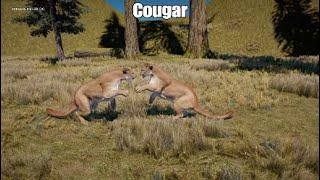 Far Cry 5: Cougar Hunting and Killing animals