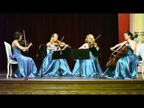 Cvartet Anima - Gaseste-mi loc in inima ta - Stefan Banica Jr