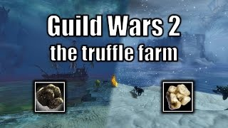 Guild Wars 2 gold guide: the truffle farm (August 2016)