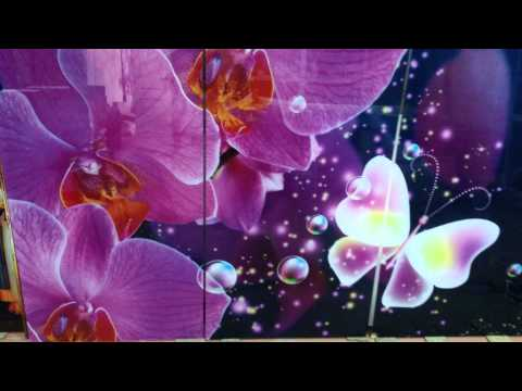 УФ печать шкаф купе Орхидеи и бабочки
