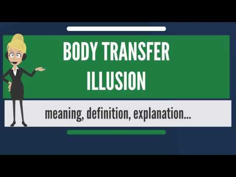 What is BODY TRANSFER ILLUSION? What does BODY TRANSFER ILLUSION mean?