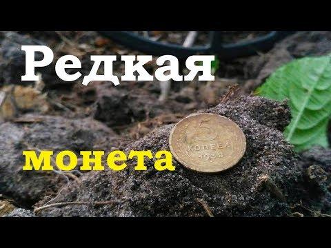 Выпала редкая монета. Коп по окопам в лесу