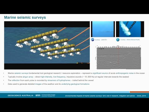 Environmental Impacts of Marine Seismic Surveys