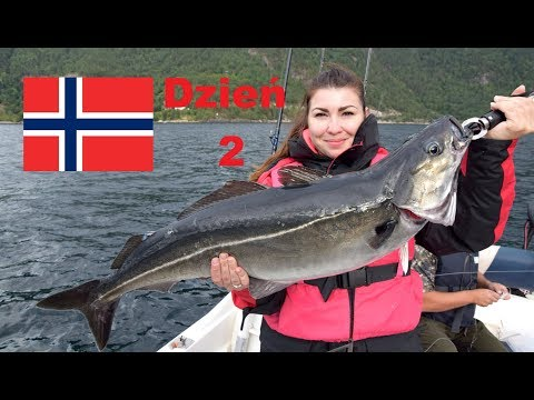 Wyprawa wędkarska do Norwegii cz. 3 [Møre og Romsdal] Fishing in Norway- Fjord Fishing