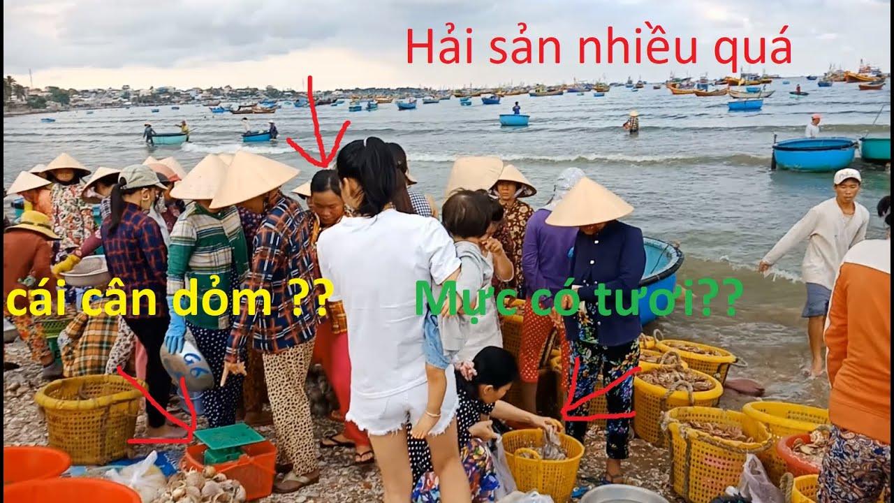 chợ hải sản Làng chài mũi né đông như kiến vào | Seafood market Cape fishing village dodges as much