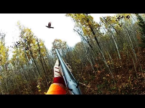 Ruffed Grouse Hunting