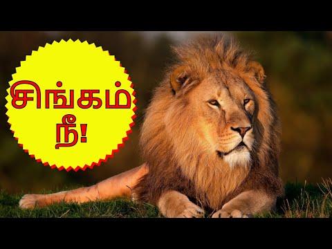 சிங்கம் நீ | Coach Vijay Prayag's Motivational Speech Tamil | Part-8
