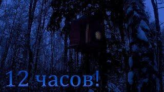 Провёл 12 часов в домике на дереве зимой в -10!!!
