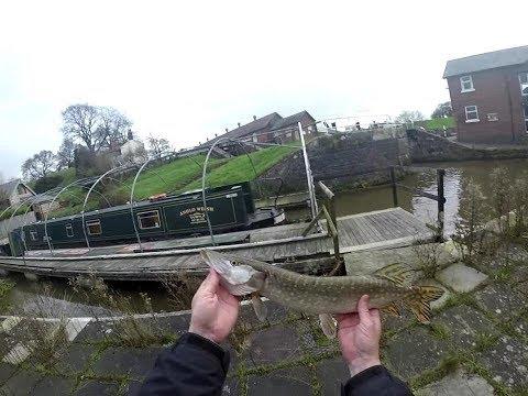 Ultra Light Lure Fishing - Shropshire Union Canal Pt3