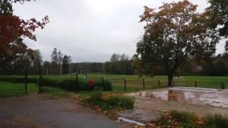 Рощино.Ленинградская область