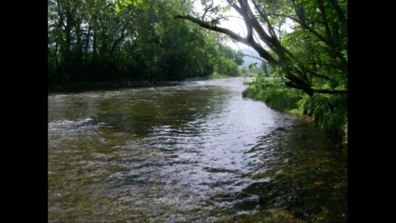 South holston river trout fly fishing youtube for South holston river fishing report