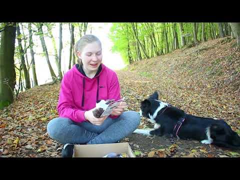 UNBOXING || Tauschpaket mit Abenteuer Hund || JJ Trickdogjunkies