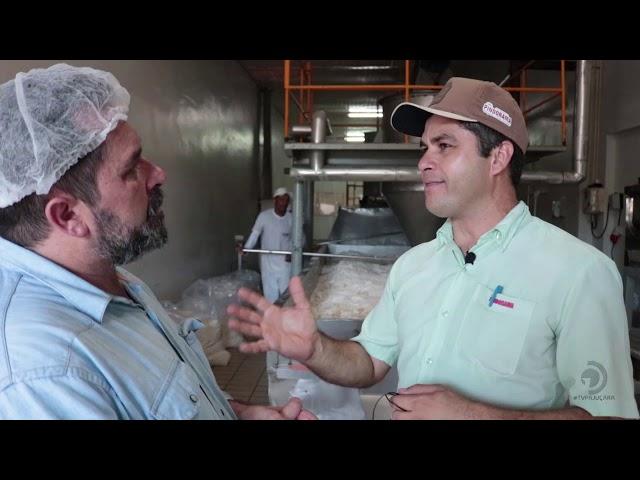 Veja como é o processo de beneficiamento do coco na Cooperativa Pindorama