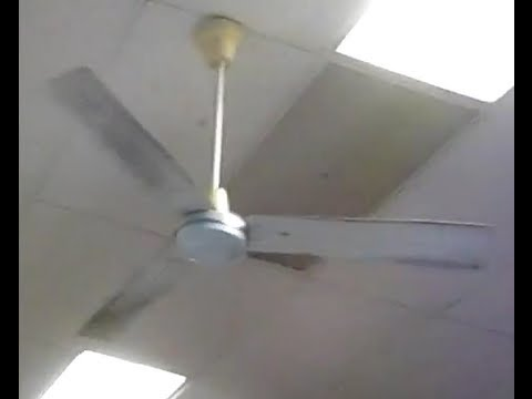 56 Quot Dayton Industrial Ceiling Fans Youtube