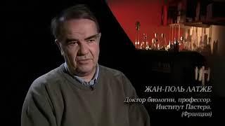Плесень.  Фильм, который расширяет сознание и понимание о здоровье! 20+ Вадим Танасьев!