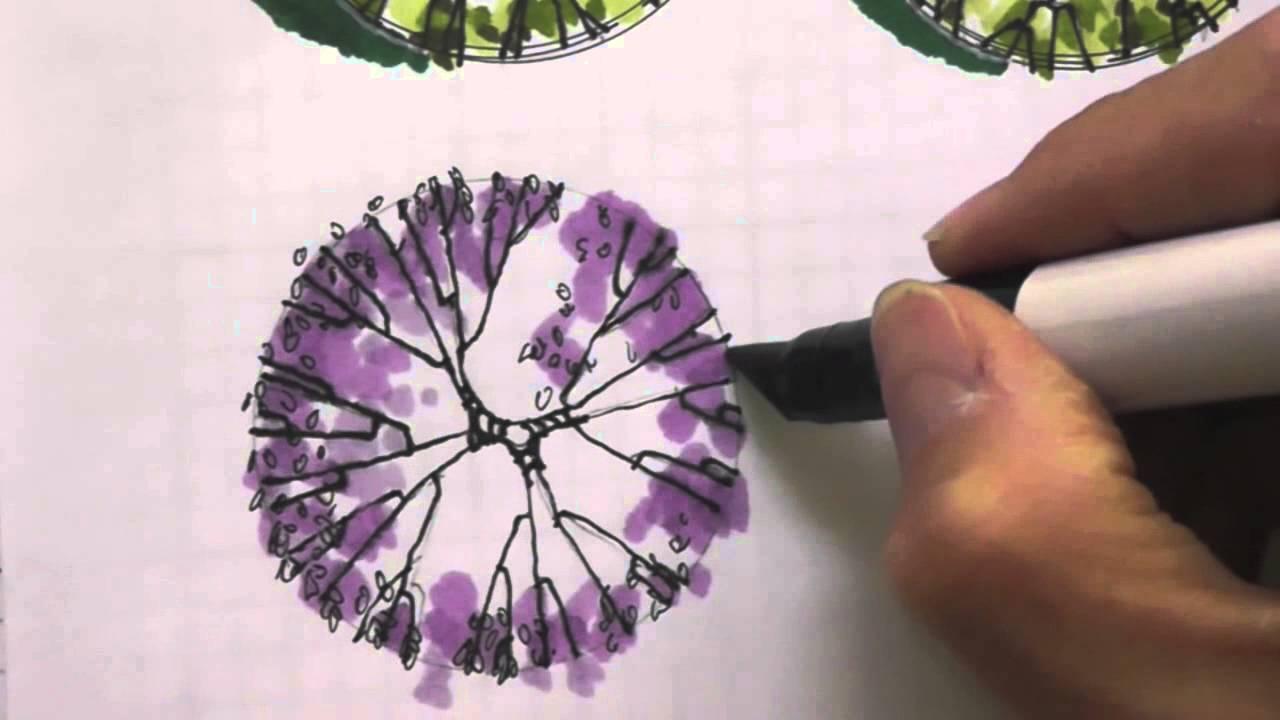 Rboles en planta color 05 youtube for Tecnicas de representacion arquitectonica pdf