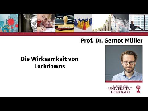 #2-die-wirksamkeit-von-lockdowns