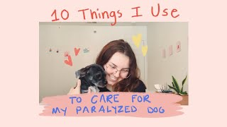 10 Things I Use to Care for my Paralyzed Dog