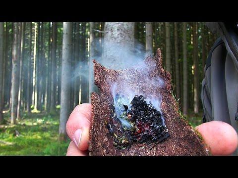 03 | Bushcraft Pflanzen - Beifuß: Essen, Feuer machen & Räuchern