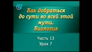 Биология для чайников. Урок 17. Обмен веществ в организме