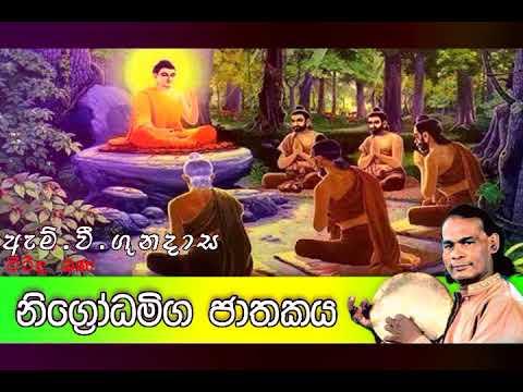 නිගෝධමිග ජාතකය | Viridu Bana | M V Gunadasa