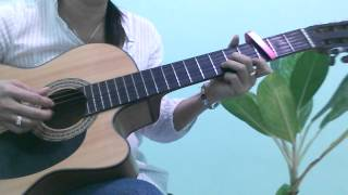 TINH CHA - Hat voi guitar.