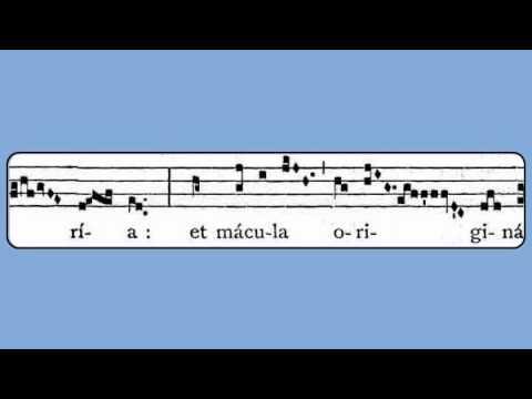 Alleluia: Tota Pulchra Es, Maria (Immaculate Conception)